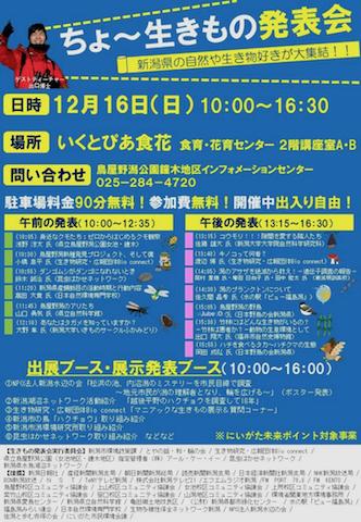 生きもの発表会 (2)