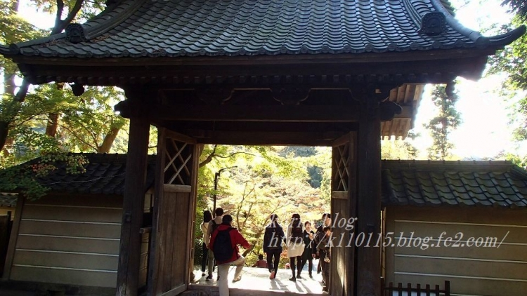2019円覚寺 (5)