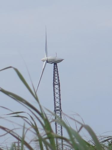 波照間島 可倒式風力発電風車