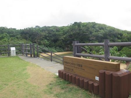 石垣島 吹通川(ふきどうがわ)
