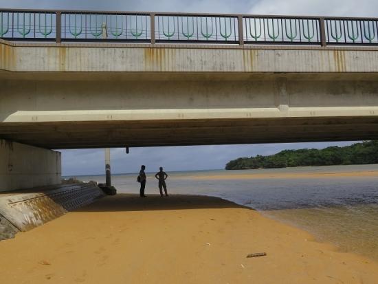 石垣島 吹通川(ふきどがわ)