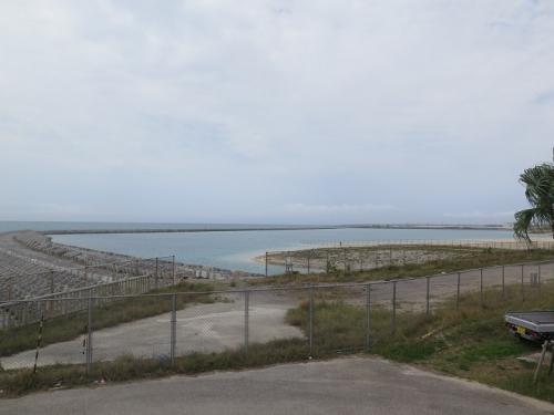 石垣島 イルカと遊ぶ施設