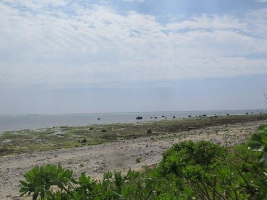 石垣島白保の海
