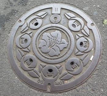 川崎駅前 マンホール ツツジ