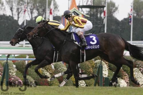 【競馬】M.デムーロとC.ルメールが重賞でどれだけデムルメしてるか検証した