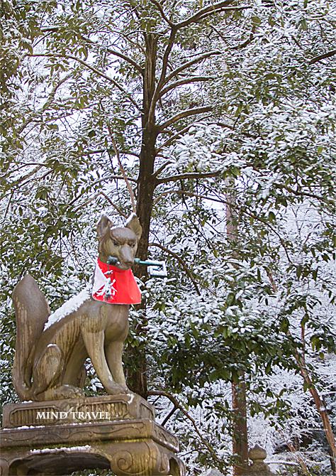 伏見稲荷大社 狐 雪2