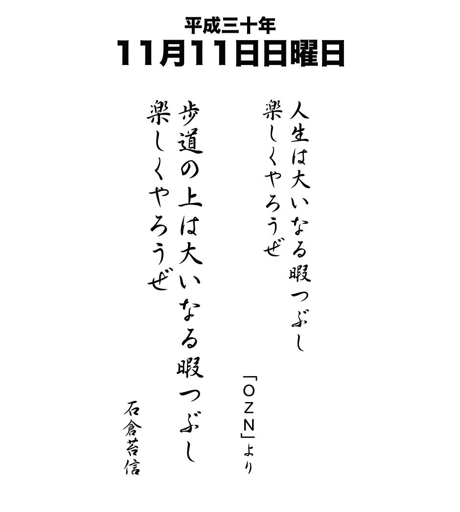 平成30年11月11日