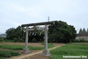 八雲神社(さいたま市西区宮前町)10