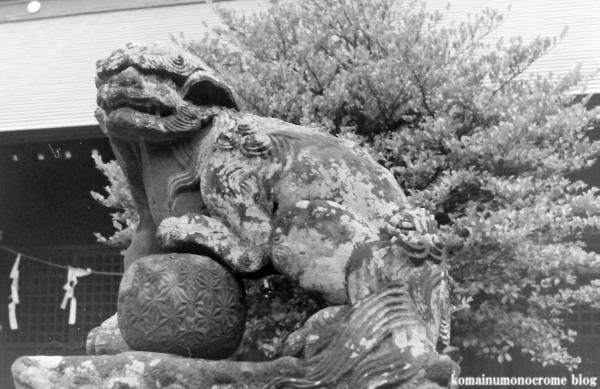 美女木八幡神社(戸田市美女木)5