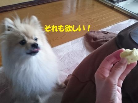 20161207_5.jpg