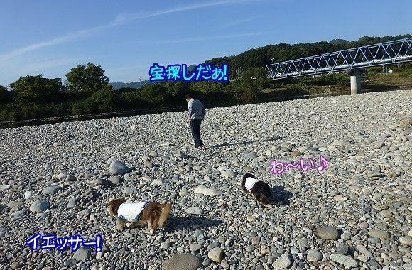 20161128231401eda.jpg