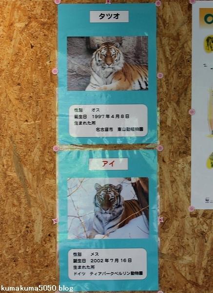 円山動物園_15