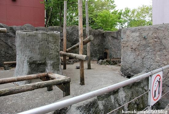のぼりべつクマ牧場_53