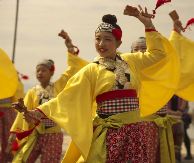 2009年から続いている「よさこい祭り」の撮影