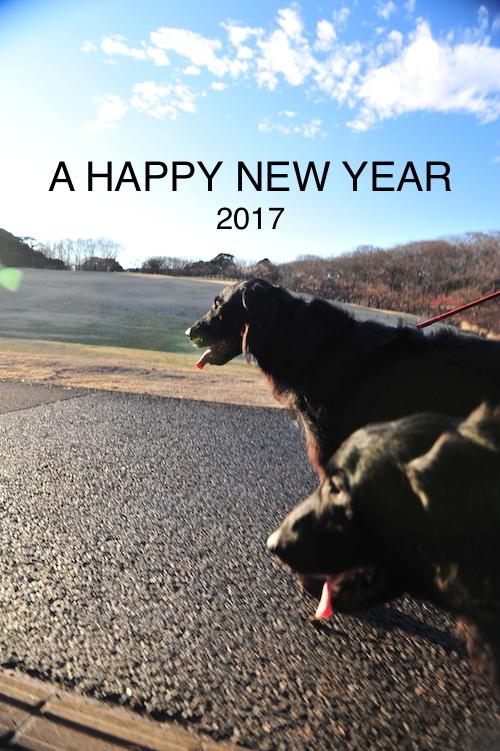 あけましておめでとうございます2017