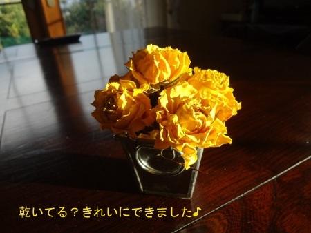 DSC06291sd.jpg