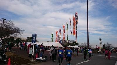 2016加須こいのぼりマラソン01