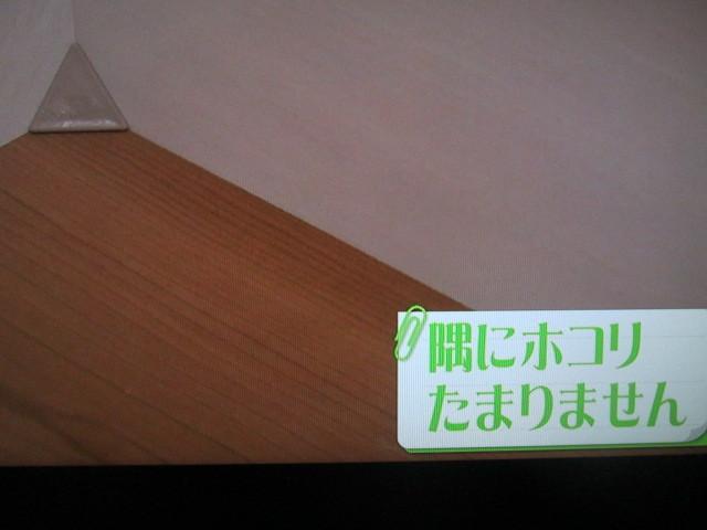 IMG_5973.jpg