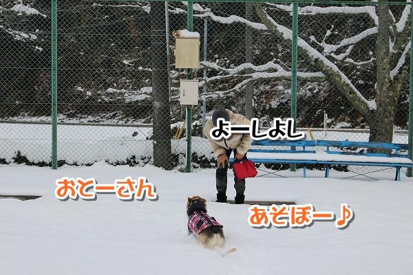 IMG_0020-1.jpg