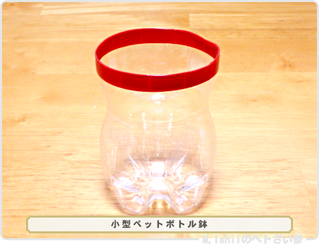 ペトさい(ペットボトル鉢)05