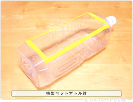 ペトさい(ペットボトル鉢)04