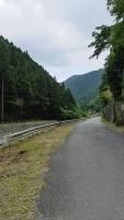20160603稲子253