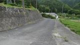 20160603稲子273