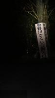 20161126江川邸014