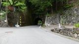 20160716赤沢宿124
