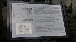 20170102浅草寺169