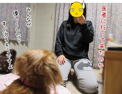 kinako6224.jpg