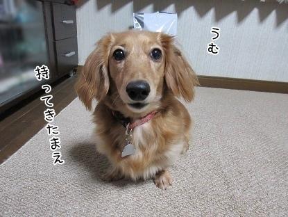 kinako6378.jpg