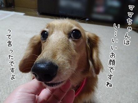 kinako6595.jpg