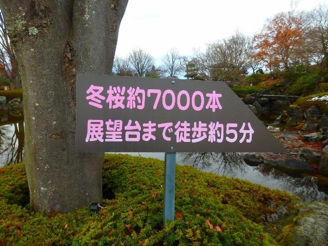 20161201211650c2f.jpg
