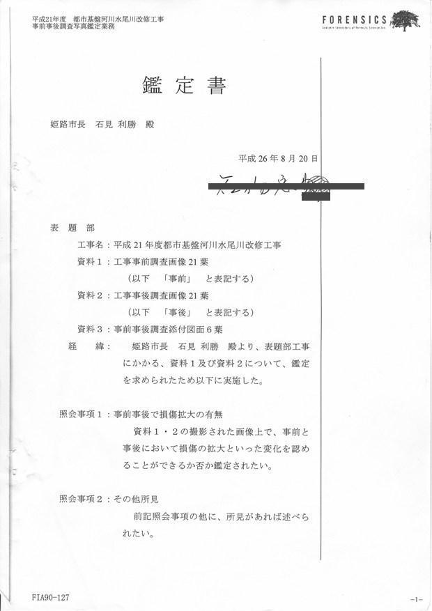 画像鑑定書-2 (2)