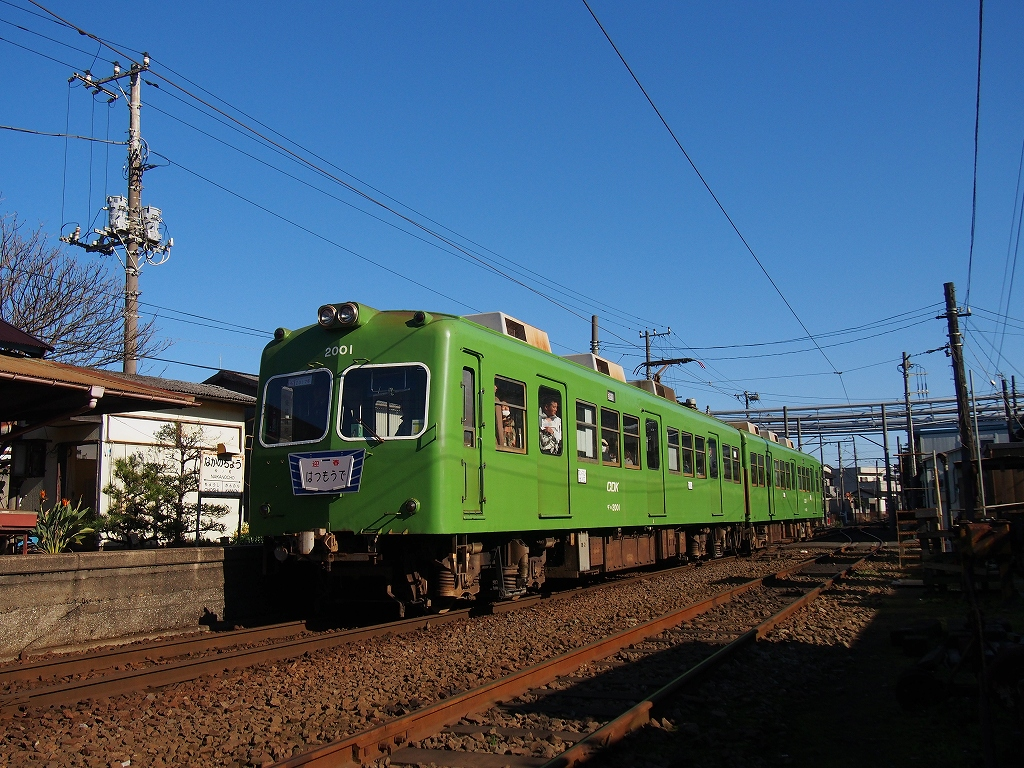 P1010599.jpg