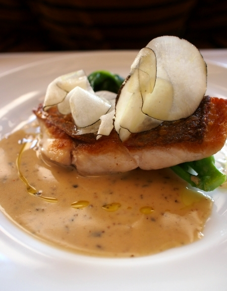 フチテイ 魚