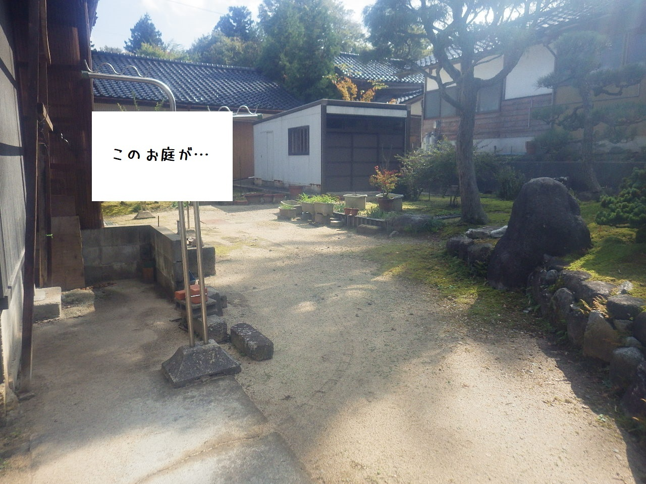 RIMG6202.jpg