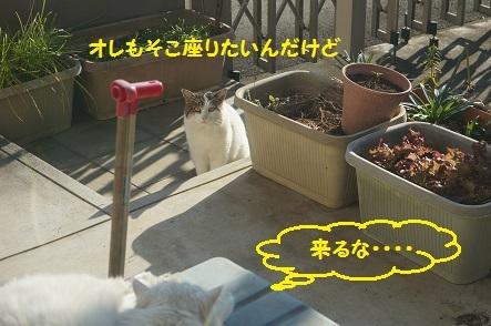 20161229120056abe.jpg