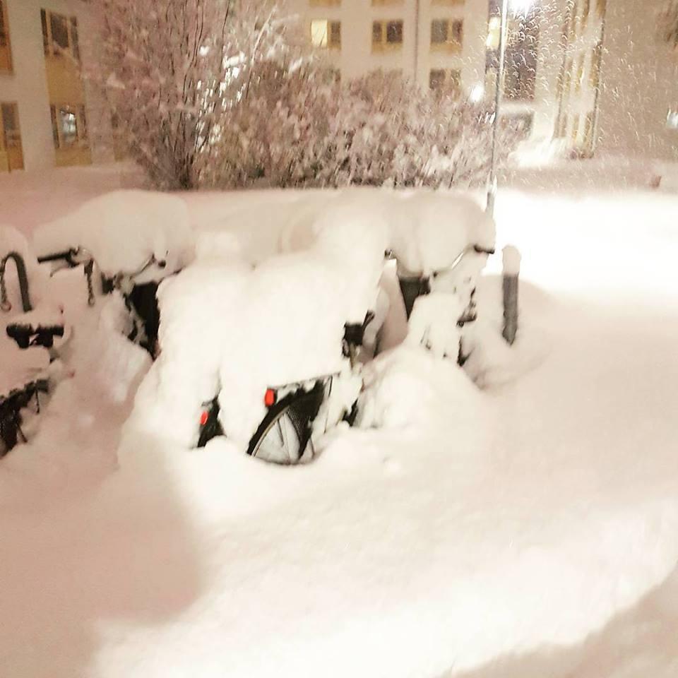 スウェーデンで観測史上最高の積雪に…11月としては1905年以来の大雪