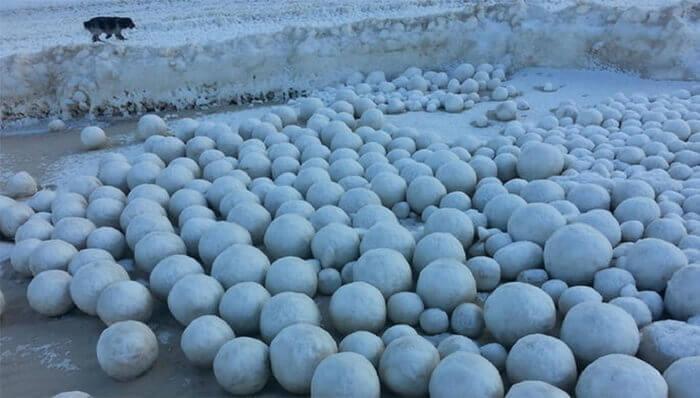 【ロシア】謎の雪玉が大量に出現…地元住人「いままで見たことがない自然現象だ」