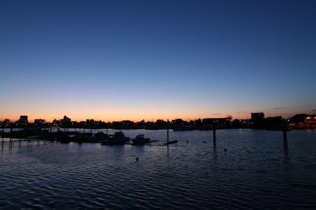 【放射能】東京・江戸川区の川の「鯉(コイ)」からもセシウム検出、福島沖のヒラメ以上に汚染か