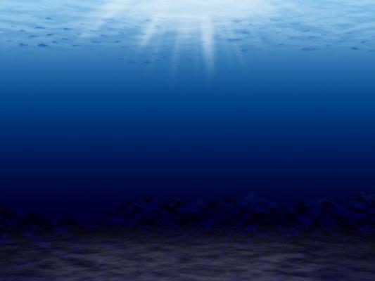 sea7867862125.jpg