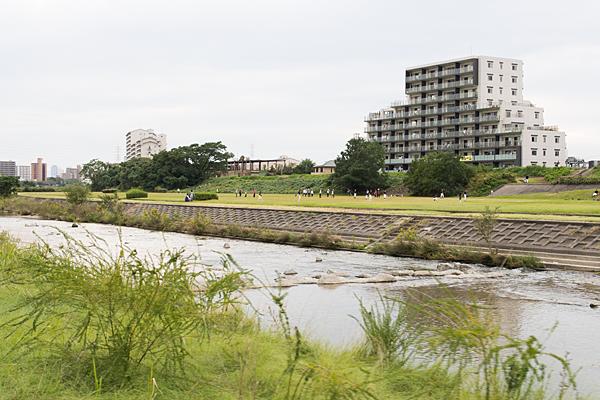 矢田川河川敷風景