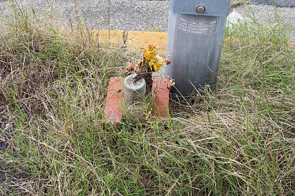 供えられた枯れ花