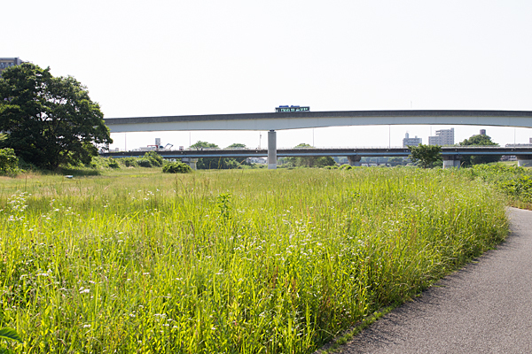矢田川川原とゆとりーとライン