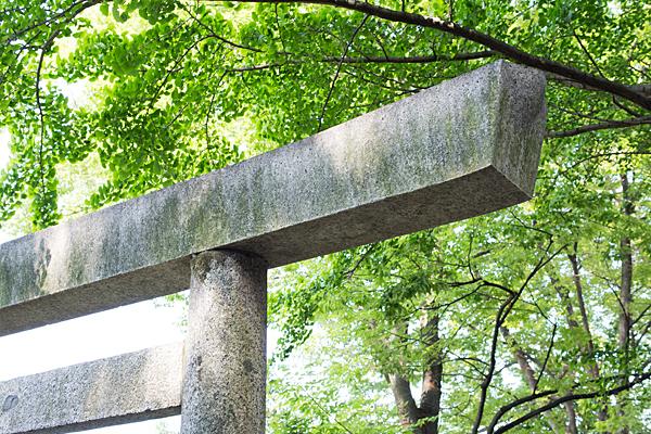須佐之男神社鳥居