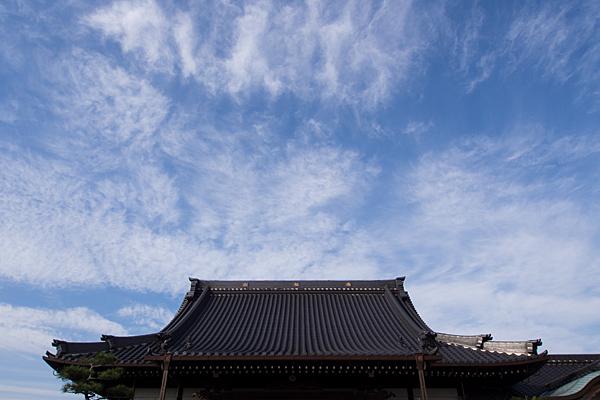 長慶寺本堂屋根