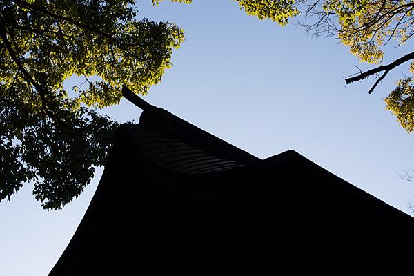 八剱社社殿屋根
