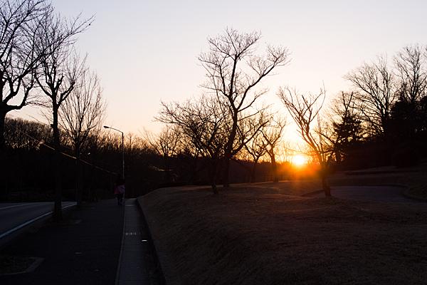 平和公園夕陽とランナー